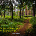 Irish Proverb - Your Feet Will Take You... by James Truett