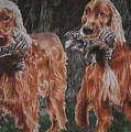 Irish Setters by Darcie Duranceau
