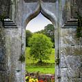 Irish Summer Through Kildysart Church Ruins by James Truett