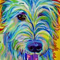 Irish Wolfhound - Angus by Alicia VanNoy Call