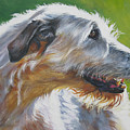 Irish Wolfhound Beauty by Lee Ann Shepard