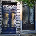 Iron Door Of Brussels by Jost Houk