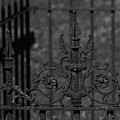 Iron Fence Gate by Kathy Kirkland