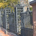 Iron Fence by James Haney