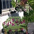 Iron Garden Bench by Sally Weigand