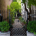Iron Gate Alley by Dale Powell