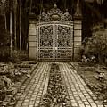 Iron Gate by Amarildo Correa