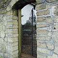 Iron Gate To The Garden by D Hackett