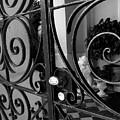 Iron Gate by Wendy Mogul
