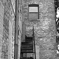 Iron Steps by Lauri Novak