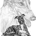 Irresistible - Greyhound Dog Print by Kelli Swan