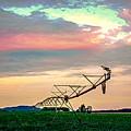 Irrigation by Doug Wallick