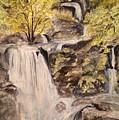 Iruppu Falls  by Vinaya Kini