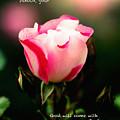 Isaiah 35 V 4 by Debbie Nobile