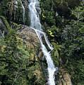 Isla Hoste Waterfall by Larry Dale Gordon - Printscapes