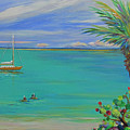 Islamorada Snorkeling by Anne Marie Brown