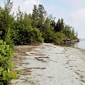 Island - Beach by D Hackett