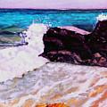 Island Cruise by Stan Hamilton