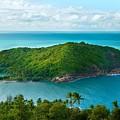 Island by Dorothy Binder