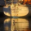 Island Girl by David Lee Thompson