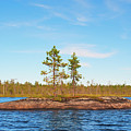 Island In The Form Of A Smooth Rock With Several Pines by Vadzim Kandratsenkau