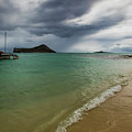 Island Living by Mitch Shindelbower