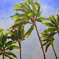 Island Palms by Mary McInnis