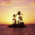 Island Silhouette by Tomas del Amo - Printscapes