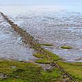 Island Sylt - Mudflat by Marc Huebner