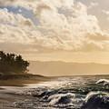 Island Time by Alex Lapidus