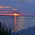Isle Of Wight Bay Sunset by Michael Hills