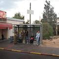 Israeli Bus Stop by Sandra Bourret