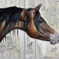 Arabian 5 by Cat Culpepper
