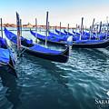 Italian Blue by Sarah Filipi