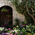Italian Front Door Adorned With Flowers by Marilyn Hunt