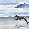Italian Greyhound At The Beach by David Rogers