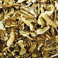Italian Market Dried Mushrooms by Irina Sztukowski