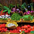 Italian Vegetables  by Harry Spitz