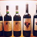Italian Wines by Kathy Schumann