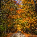 Its A Michigan Fall by Robert Pearson