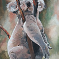Its About Trust - Koala Bear by Suzanne Schaefer