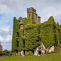 Ivy Covered Ruined Castle Ireland by Pierre Leclerc Photography