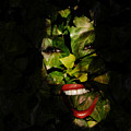 Ivy Glamour by Clayton Bruster