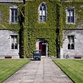 Ivy League by Joe Burns