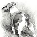 Jack Russell Terrier by Joyce Geleynse