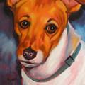 Jack Russell Terrier by Kaytee Esser