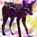 Jackal Children Watercolor Animal  by PixBreak Art