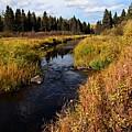 Jackfish Creek In Autumn by Larry Ricker