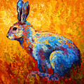Jackrabbit by Marion Rose
