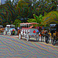 Jackson Square Horse And Buggies by Bill Cannon
